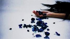 サカナクション 「目が明く藍色 」